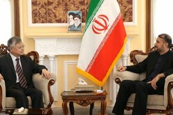 Iran's role in ensuring regional peace, stability significant: Chinese envoy