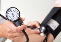 WHA members lauded Iran's national plan to lower hypertension