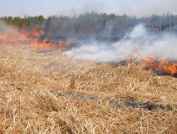 جنگلهای بالادست کرخه آتش گرفتند/ بالگرد اعزام شد