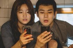 فروش میلیونی برنده نخل طلا در کره/ آمریکاییها فیلم را میبینند