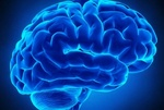 برگزاری مراسم «هفته آگاهی از مغز» به سال آینده موکول شد