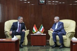 Iran, Tajikistan discuss boosting energy cooperation