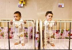 ۶۰ کودک در مراکز بهزیستی زنجان نگهداری می شوند