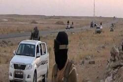 داعش دزەی کردووەتە ناوچەیەکی نێوان دیالە و سەلاحەدین