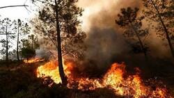آتش سوزی گسترده در مزارع دره شهر/ آتش به تنگه بهرام چوبین رسید
