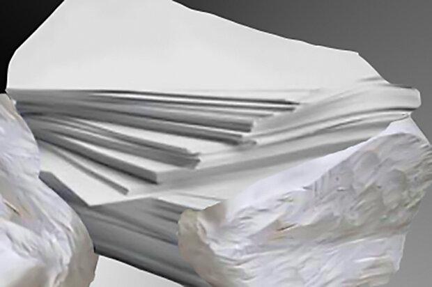جزئیاتی از فروش کاغذ دولتی نشر و حجم دریافتی ناشران