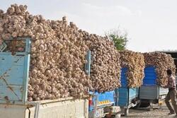 ضرورت برندسازی محصولات کشاورزی در سوادکوه