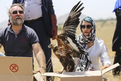 Release of animal species in Khojir National Park