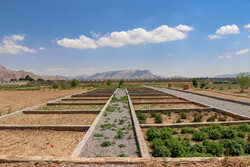 ساخت مجتمع فرآوری گیاهان دارویی در بندرگز آغاز شد