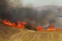 بحران در دهلران/ آتش سوزی همچنان در حال پیش روی است
