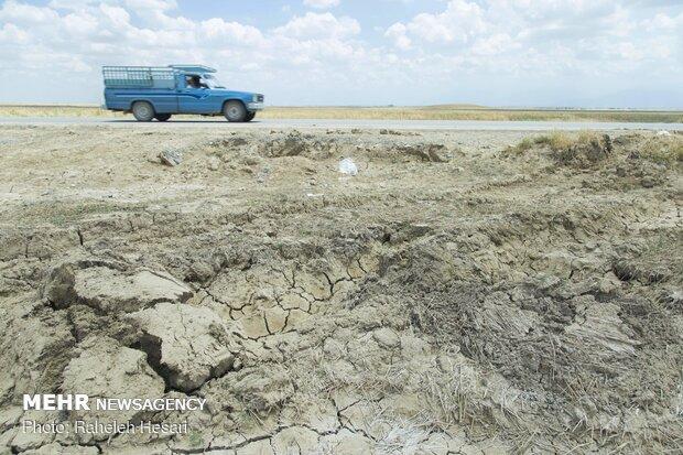 بسیاری از زمین ها بخاطر آب گرفتگی طولانی مدت اسفنجی و نرم شده اند، فعلا امکان کاشت در این زمین ها وجود ندارد.