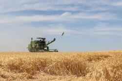 کشاورزان از فروش محصولات به دلالان خودداری کنند