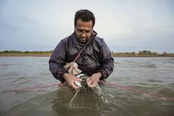 یاسر ہر ہفتہ کے آخر میں مچھلیوں کا شکار کرتے ہیں