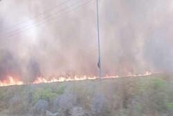 آتش سوزی گسترده در دره شهر/بی توجهی محیط زیست و منابع طبیعی استان