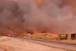 بزرگترین حریق در شرق عراق/ دشتهای کشاورزی در حال سوختن است