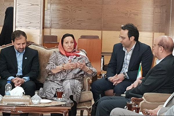 بازارچه صنایع دستی سعدالسلطنه قزوین می تواند ثبت جهانی شود