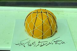 اردوی بسکتبالیها با غافلگیری سلطانیفر/ جشن تولد برای وزیر ورزش!