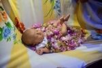 نخستین جشنواره گل محمدی در گرگان