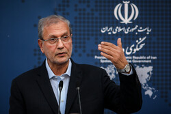 Iran awaiting fulfillment of Europeans' promises: Gov. spox