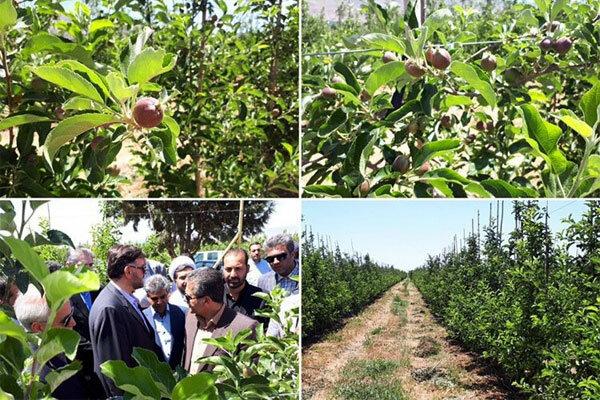 افتتاح چند پروژه کشاورزی و گردشگری در دماوند