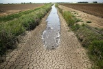 Is inter-basin water transfer a remedy to quench dry lands?
