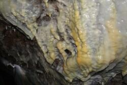 کشف غار زیر بافت مسکونی برزک کاشان/شناسایی ۶۰۰ متر از غار