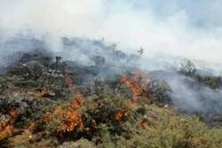 تمهیدات لازم برای جلوگیری از آتش سوزی در منابع طبیعی بافت به کار گرفته شود