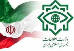 Iran deals heavy blow to U.S. spy network: Intelligence Ministry