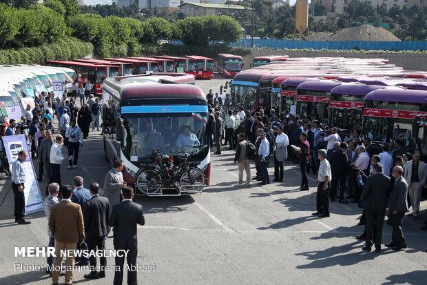 حافلات جديدة في شوارع المدينة