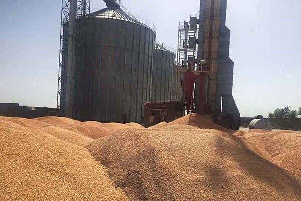 ظرفیت ذخیره سازی گندم در گلستان ۱ میلیون و ۵۰۰ هزار تن است