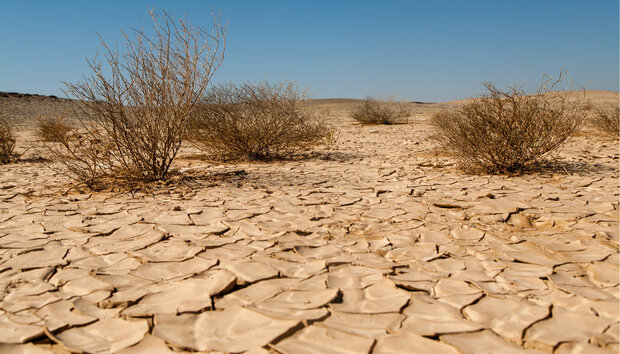 before and after pictures of desertification