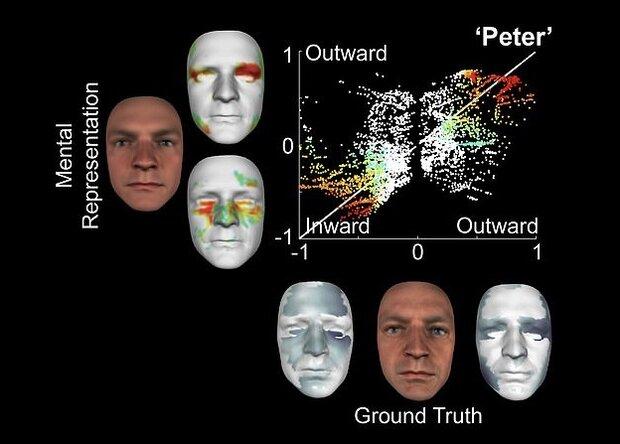 هک مغز انسان برای بازسازی تصاویر ذهنی افراد