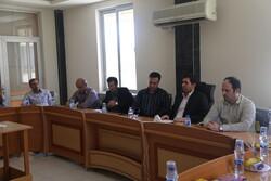 تامین برق پایدار اولویت شرکت توزیع برق استان بوشهر است