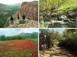 ایجاد ۱۹ هزار فرصت شغلی با اجرای پروژه های گردشگری در خراسان رضوی