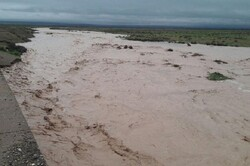 طغیان رودخانه های فصلی در هشتبندی/بارندگی کشاورزان را خوشحال کرد