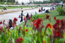 چالش های ارتقا سواد سلامت روان شهروندان تهرانی