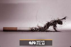 سگریٹ کے انسان پر تباہ کن اثرات