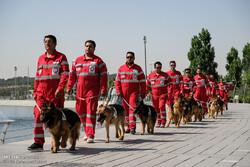مناورات كلاب البحث والانقاذ لدى الهلال الاحمر / صور