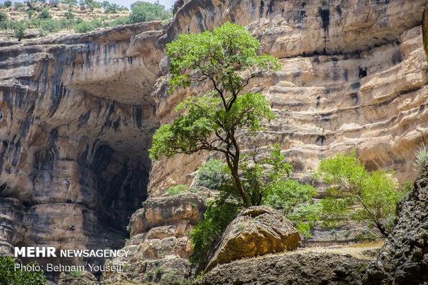 'Shirz' Canyon in Kuhdasht