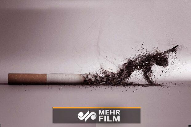 ۳۰ پاکت سیگار روی انسان چه تأثیری میگذارد؟