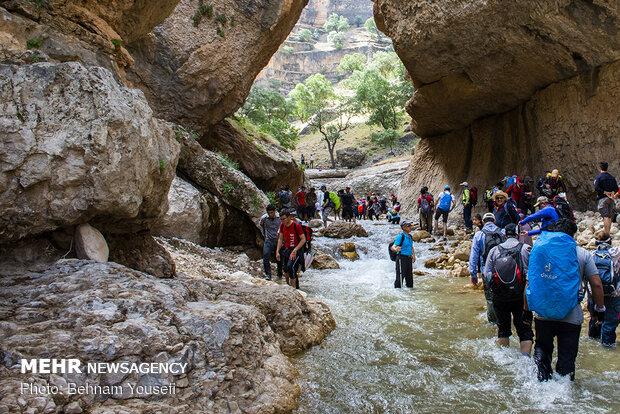 دره شیرز کوهدشت ، شگفتی طبیعت زاگرس - کراپشده