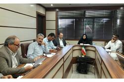 ۳ هکتار گلخانه در استان قزوین به بهره برداری رسید