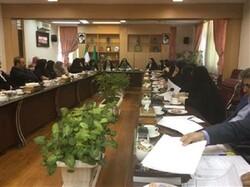 ششمین جلسه کارگروه ملی توانمند سازی زنان سرپرست خانوار برگزار شد