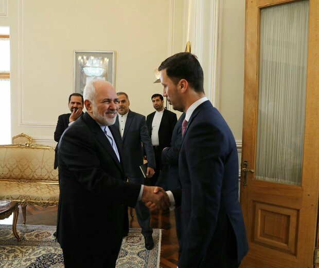 Zarif meets Slovakian deputy FM in Tehran