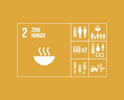 Clearing the road ahead to reach Zero Hunger in Asia and the Pacific