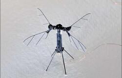 حشره رباتیکی که با نور پرواز می کند