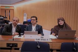 بانوی ایرانی نایب رئیس یکی از کمیته های سازمان جهانی دریانوردی شد