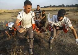 شهادت یک فلسطینی در غزه به دست صهیونیستها