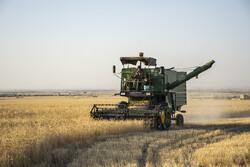 جذب ۳۰ میلیارد ریال تسهیلات مکانیزاسیون بخش کشاورزی در دامغان