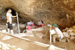 Remains of a Neanderthal-era horse found in Iran